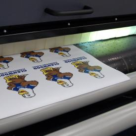 Magnet Printing Options