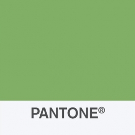 Pantone Color Institute Unveils Color Report for New York Fashion Week